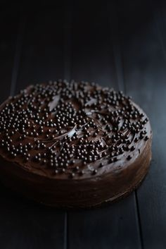Celebration Chocolate Cake This is health food!!! And mental health food! And I WILL bake it.
