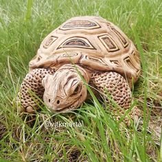 Pictures To Draw, Turtle, Drawings, Animals, Painting, Turtles, Animales, Animaux, Tortoise