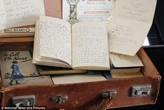 Battered suitcase unlocks story of a World War One nurse who cared for German soldiers while her brother lay dying on the battlefield ~