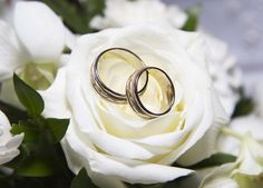 Wedding bands rested on white roses Rose Wedding, Diy Wedding, Dream Wedding, Wedding Day, Wedding Rings, Wedding Store, Wedding White, Wedding Blog, Wedding Reception
