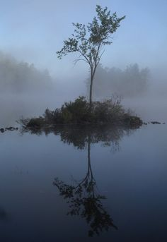 """Reflection"", by James Fereira taken at Lake Maranacook, Readfield, ME"