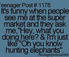I always do my elephant hunting at the supermarket...what do you do at the supermarket? :)
