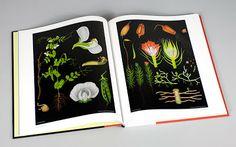green bicycle: black botanical prints