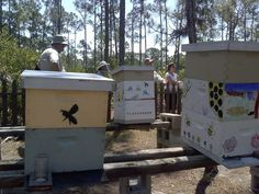 Have fun with the hive, let your children decorate them and get them more involved.