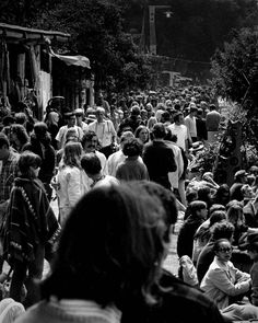 Monterey Pop Festival, Summer Of Love, Suddenly, Like You, First Time, Concert, Amazing, Music, People