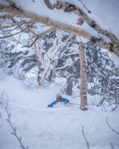 Session 4 may be sold out but you can still make it to one of our other sessions or do a custom trip. Follow the link in our bio to get in touch and ask some questions. @jorgemanuelfernandez will be there...again!!! #SASSJapan #JAPANuary #Japow #GetsomeSASS #Skiing #BackcountrySkiing #Powfordays by @lucasmoorephoto