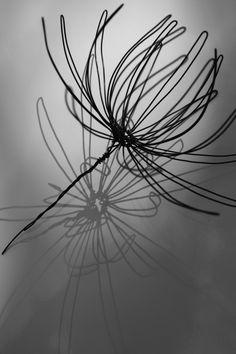 teresa-leung-wire-flower