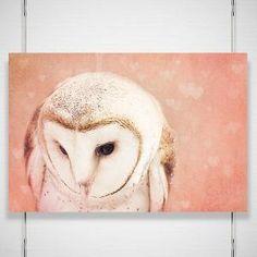 Beautiful Barn Owl Painting