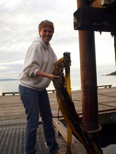 Seaweed Fertilizer: A Great DIY Natural Fertilizer For Your Garden