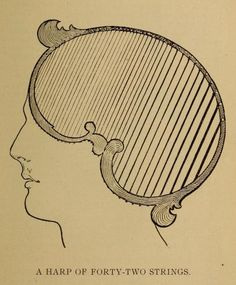 This is an illustration ffrom a work of towering badness--a work so bad that it can define bad. A work of uninentional nightmare.  An illustration from Vaught's Practical Character Reader, a book on phrenology by L. A. Vaught published in 1902.     See many more images from the book here: http://publicdomainreview.org/2013/03/19/phrenology-diagrams-from-vaughts-practical-character-reader-1902/