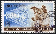 Soviet space dogs - Wikipedia, the free encyclopedia