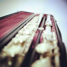 배워보려 했던 과거의 친구, 채 친해지지 못한 시간 #플루트 #flute