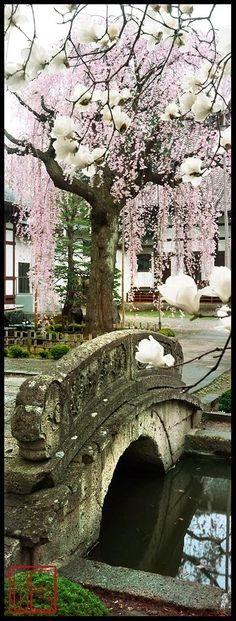 Kozen-ji, Yamagata, Japon: photo par William Corey pont en pierre et arbre… Yamagata, Places Around The World, Oh The Places You'll Go, Around The Worlds, Beautiful World, Beautiful Places, Beautiful Scenery, Amazing Places, Foto Poster