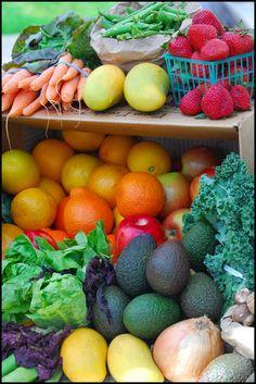 .Harvest Colors.