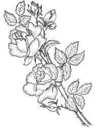 Resultado de imagen para flores para dibujar EN 3 D