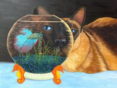 """""""Siam I Am"""" Oil painting. This beautiful Siamese cat is looking through a fishbowl at a betta fish. His magnified eye is a bright turquoise and stands out from the dark features on his face."""