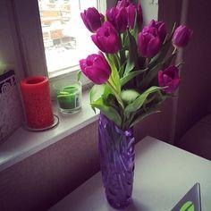«сегодня только 4 февраля ☺️, а уже #тюльпаны // #tulips are wonderful. it reminds me about Groningen»