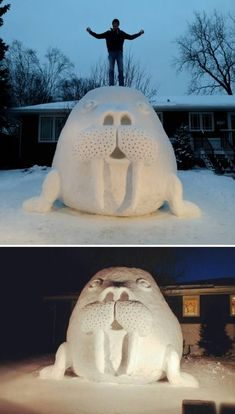 13 Coolest Yard Snow Sculptures - ODDEE...The same boys who built the shark in 2014 created a snow walrus on their lawn, which took approximately 100 hours, the previous winter