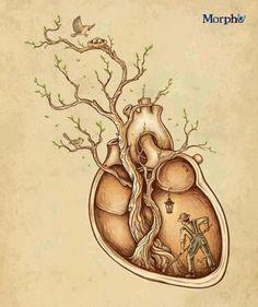 Cada árbol, cada cosa que crece, dice esta verdad: Cosechas lo que siembras…!  Rumi