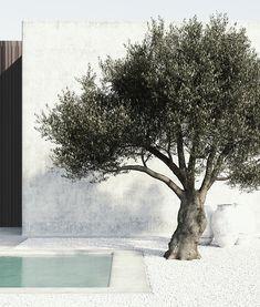 Backyard Patio, Backyard Landscaping, Love Garden, Home And Garden, Exterior Design, Interior And Exterior, Landscape Design, Garden Design, Pool Designs