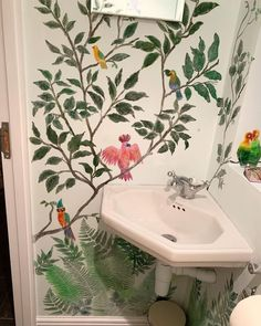 Painted Birds, Hand Painted Walls, Monkey Wallpaper, White Wall Paint, Downstairs Loo, Different Shades Of Green, Before And After Pictures, Tropical Birds, Wallpaper Samples