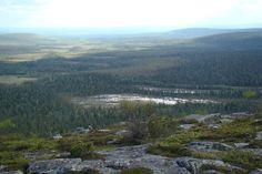 Karhutunturi, Kuopsimajat, Naruska, Lapland, Photo by Kuopsimajat