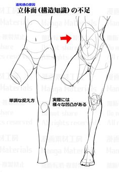 how to draw, tutorial, ass / 股間周りの描き方:違和感と修正法⑤ - pixiv Body Reference Drawing, Body Drawing, Anatomy Reference, Art Reference Poses, Arte Com Grey's Anatomy, Anatomy Art, Art Poses, Drawing Poses, Anatomy Sketches