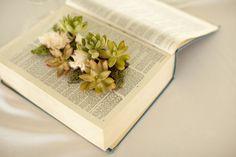 Deco nature avec un livre  de petites plantes de la mousse un vieux livre un cutter un pot rectangulaire