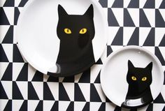 plate and cat