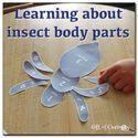 Montessori Monday - Montessori-Inspired Summer Playdough Activities