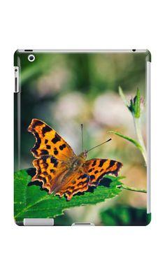 'Comma Butterfly' iPad Case/Skin by Vicki Field Ipad Case, Butterfly, Cases, Apple, Animals, Animales, Animaux, Butterflies, Animais