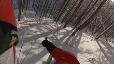 Tree skiing in Myoko Japan