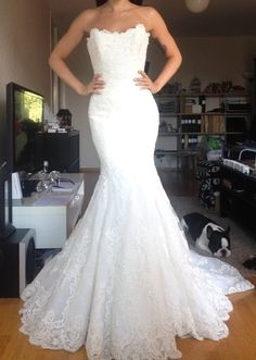 Find More Wedding Dresses Information about Bealegantom Sexy Lace Mermaid Wedding Dresses 2017 With Appliques Button Backless Plus Size Bridal Gowns Robe De Mariage WD80,High Quality dress luggage,China dress jacquard Suppliers, Cheap dresses backless from Bealegantom Wedding Flagships Store on Aliexpress.com