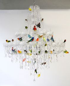 sebastian errazuriz perches taxidermied birds on a chandelier - designboom | architecture & design magazine