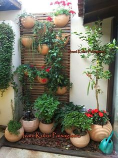 Ivani Kubo Landscaping: Co Terrace Garden, Indoor Garden, Garden Pots, Outdoor Gardens, Vegetable Garden, Plantation, Small Gardens, Garden Projects, Backyard Landscaping