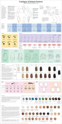 Catalogue of Human Features by `majnouna on deviantART