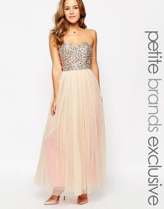 Maya Petite | Maya Petite Embellished Bodice Tulle Maxi Dress at ASOS