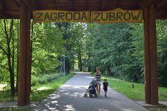 Zagroda Żubrów - Pszczyna Beautiful Places, Sidewalk, Side Walkway, Sidewalks, Pavement, Walkways