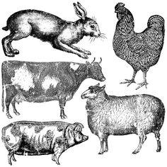Farm Animals Decor Stamp™