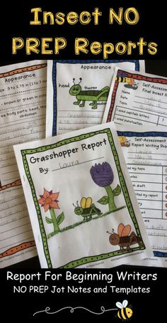 The perfect insect report for beginning writers! insect writing activities, insect writing, insect report, insect report template, insect report first grade, insect report second grade, insect research project, insect research report, insect research firs Inquiry Based Learning, Project Based Learning, Teaching Writing, Writing Activities, Science Lessons, Science For Kids, Informational Writing, Informative Writing, Report Writing