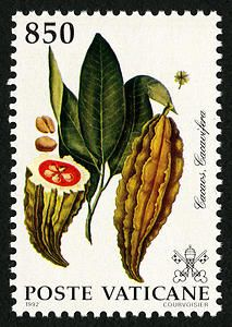 Cacaos and Cacavifera stamp, Vatican City, 1992. Smithsonian National Postal Museum