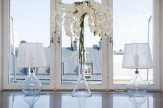 white orchids and glass - Adalmina's Secret
