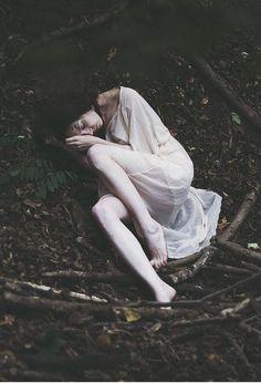 Asleep in a wood... Tess of the d'urberville esque