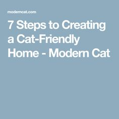 7 Steps to Creating a Cat-Friendly Home - Modern Cat