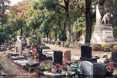 View of Le cimetiere des chiens at Asnieres-sur-Seine, Paris  translation: cemetery for dogs :(
