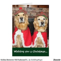 Golden Retriever Old Fashioned Christmas Card