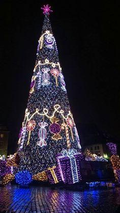 Christmas Tree/ Warszawa, 2014
