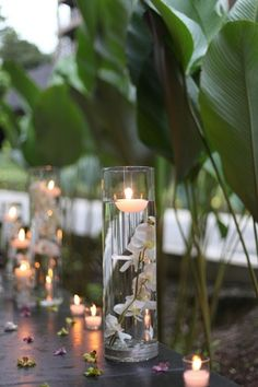 floating orchid wedding candles as the aisle