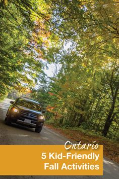 Fall is the perfect time for family travel. One of our favorite fall activity in Ontario, Canada is going for a long drive to in search of the prettiest leaves.