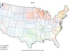 Where In the U.S. do people say pee-kahn over pi-kahn? Joshua Katz answered your burning question by mapping Bert Vaux's dialect survey on r...